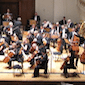 Royal Philharmonic Concert Orchestra